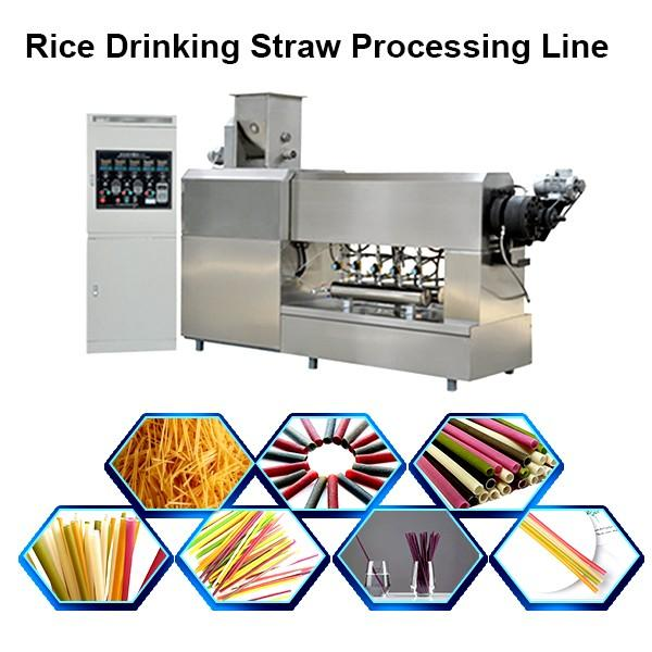 2019 Hot Sale Rice Straw Extruder with Ce & ISO #1 image